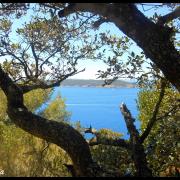 Ce petit coin de Paradis ... Port-Cros ♥