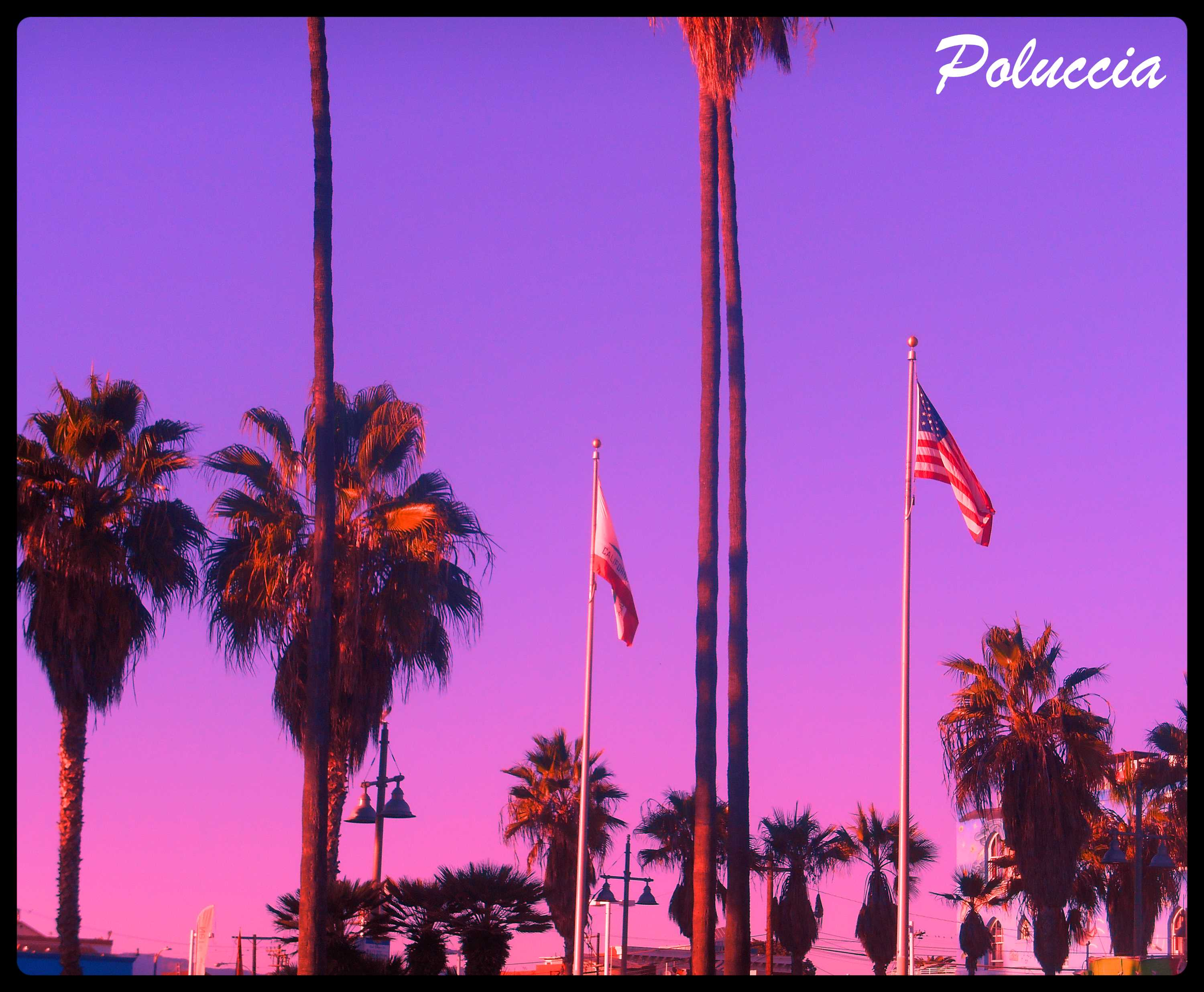 New Image VENICE BEACH G