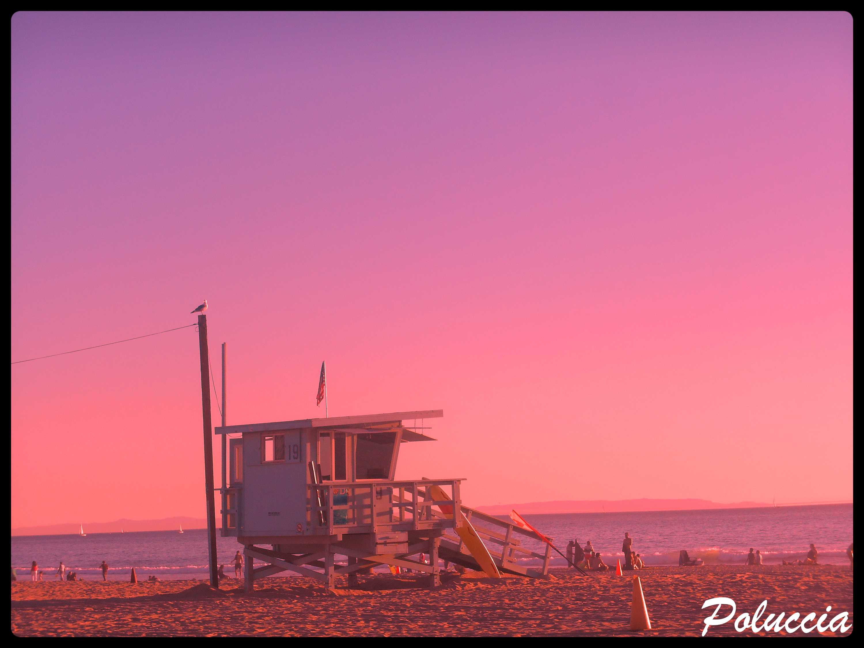 New Image VENICE BEACH L