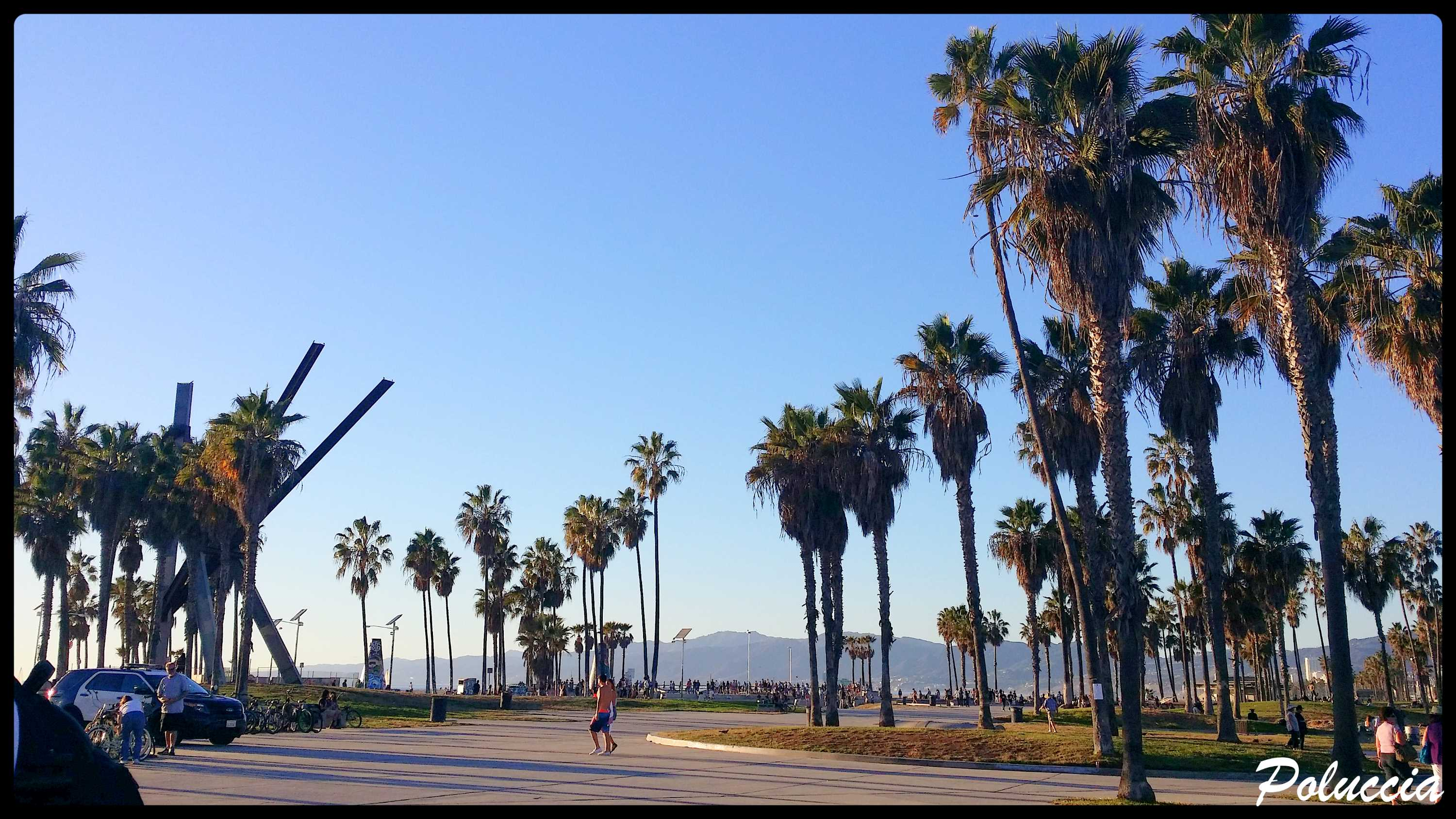 New Image VENICE BEACH M