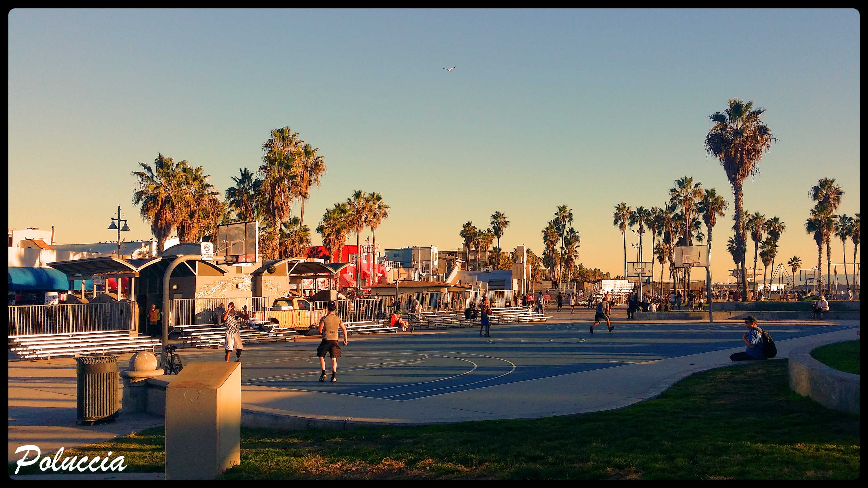 New Image VENICE BEACH N