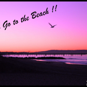 Let's go to the beach ! Venice, Malibu, Santa Monica
